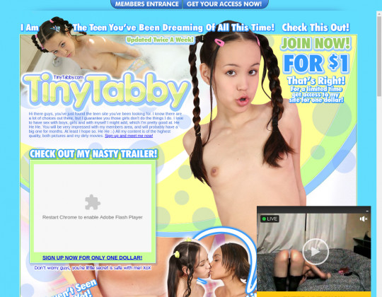 tiny tabby